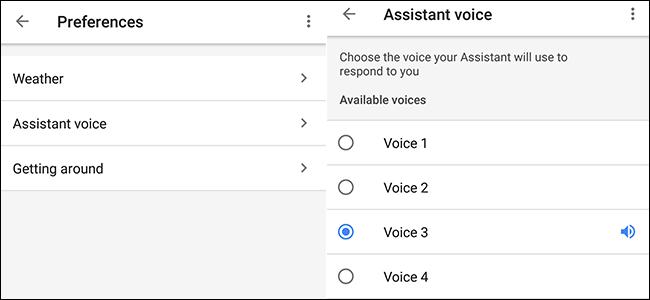 Asistente de Google con 6 voces disponibles